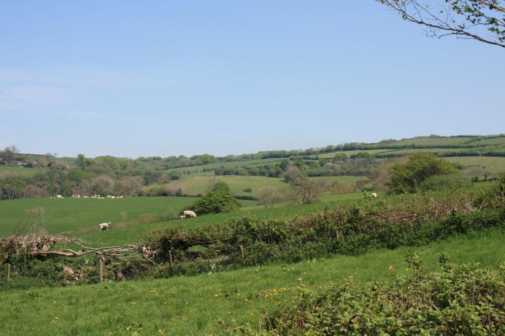 Views of Exmoor
